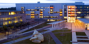 UC San Diego / CSE building and the Stuart Collection stone bear