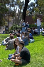 Small groups of students conversing on lawn